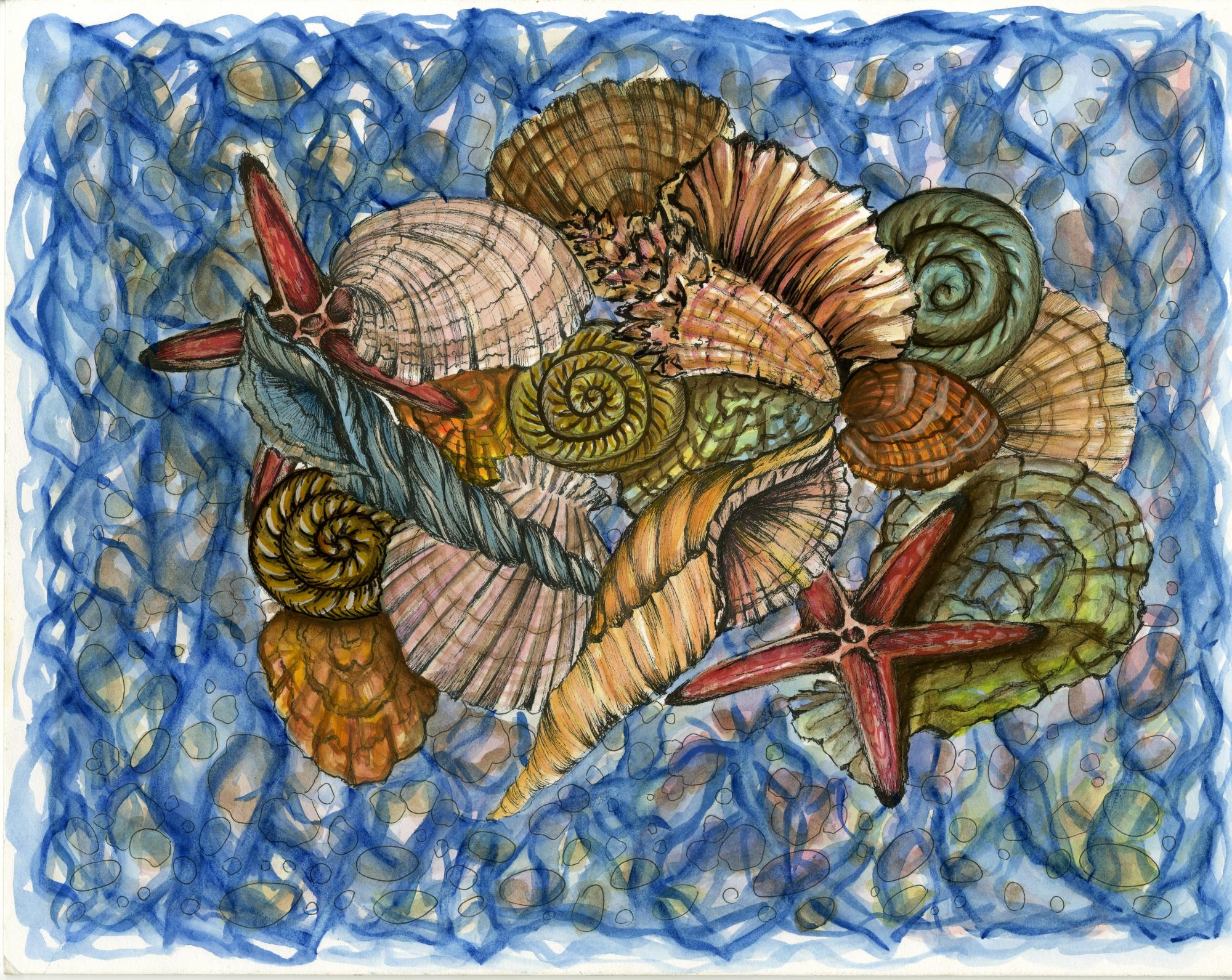 """Treasures of the Sea"" by Nadiya Smyrnova (17), Huntsville, AL (c) 2014 River of Words"