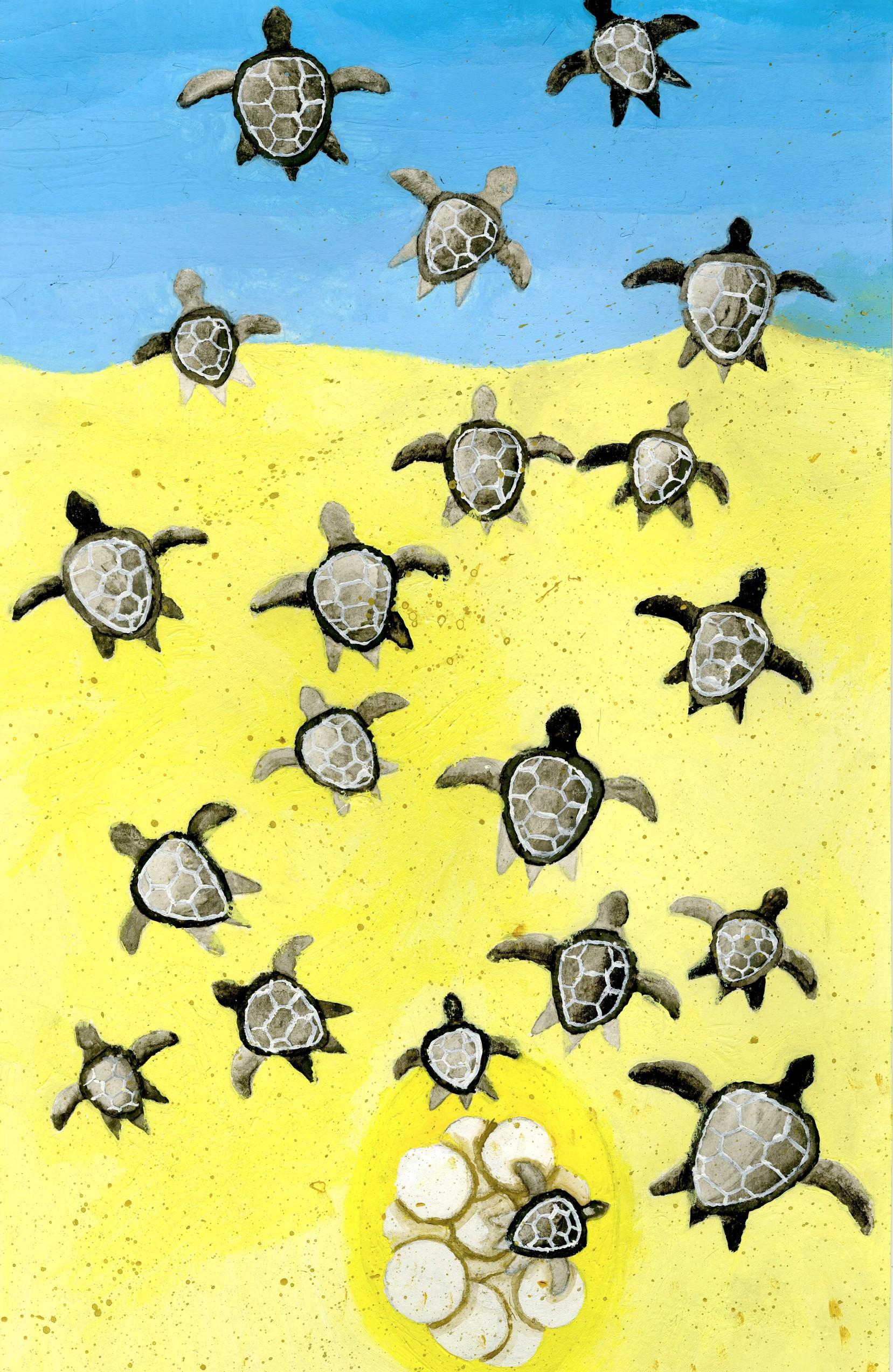"2015 River of Words Finalist ""Turtle Life"" Nicole Li, age 11. Johns Creek, Georgia. Shujun Art Studio - Teacher: Shujun Munns"