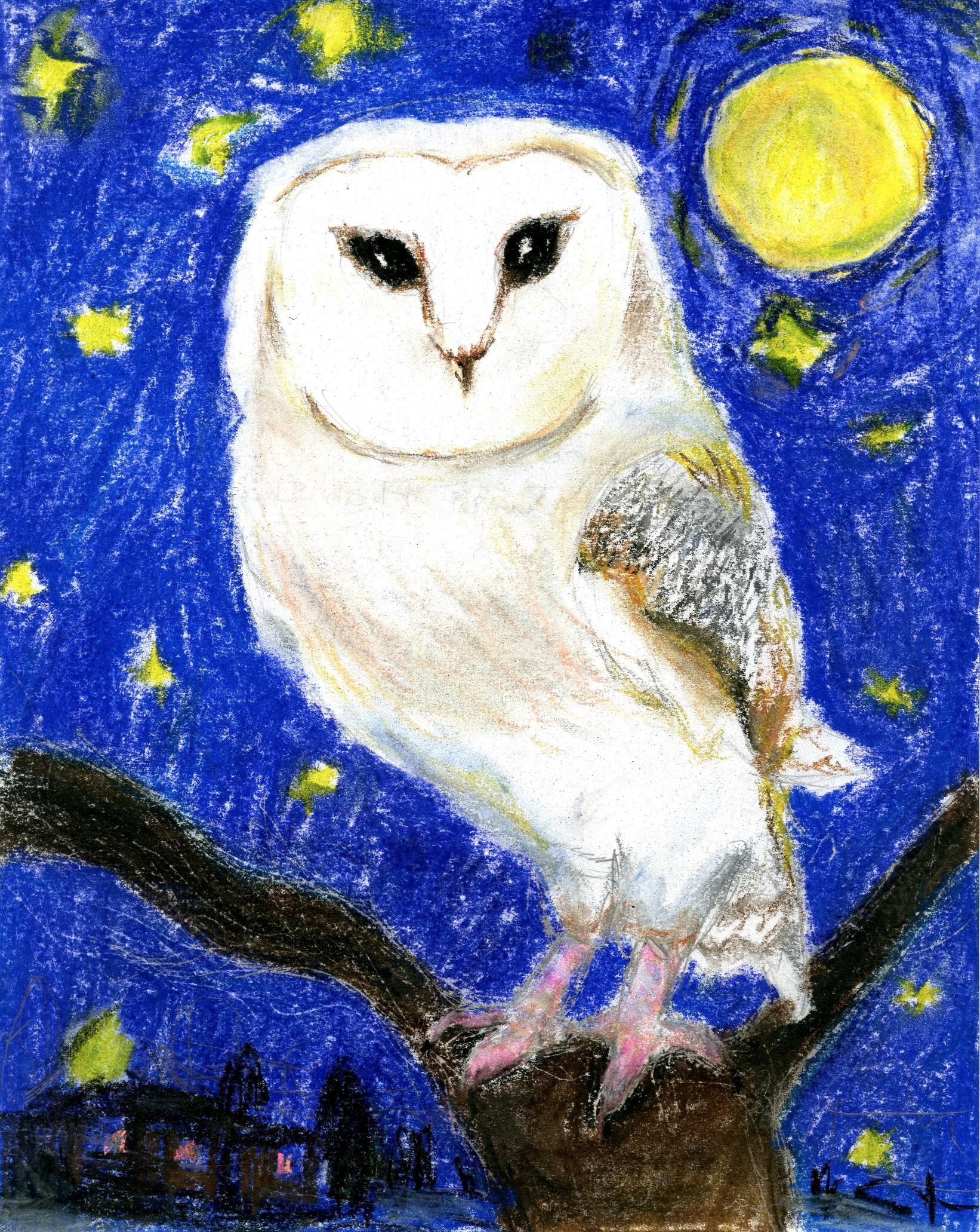 "2015 River of Words Finalist ""The Midnight Owl"" Edward Wu, age 12. Naperville, Illinois"
