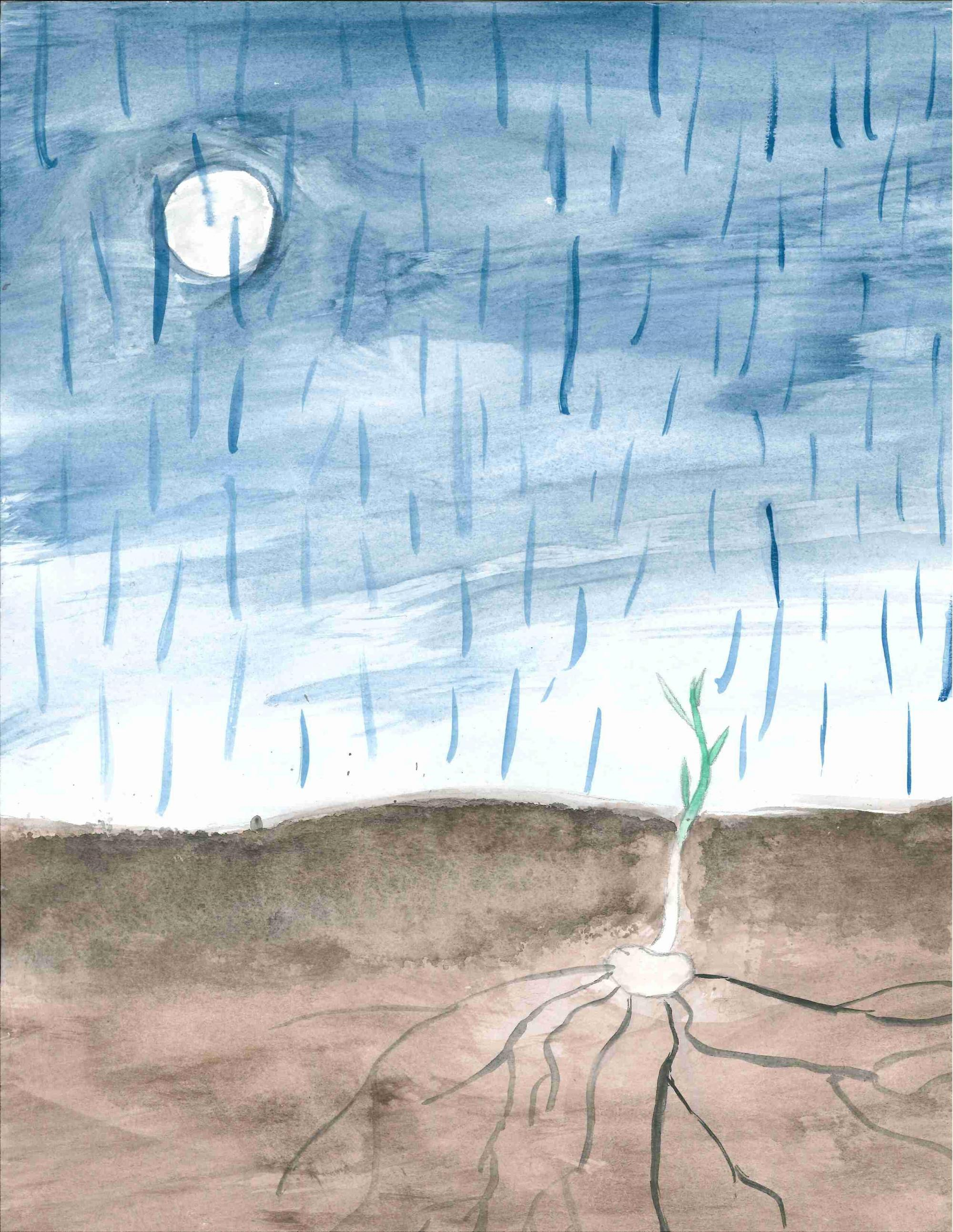 """Rain on the Soil""  Serenne Henry-Mitchell, age 10. Olympia, WA. Olympia Regional Learning Academy  Teacher: Tim Brewer. 2016-2017 Art Finalist"
