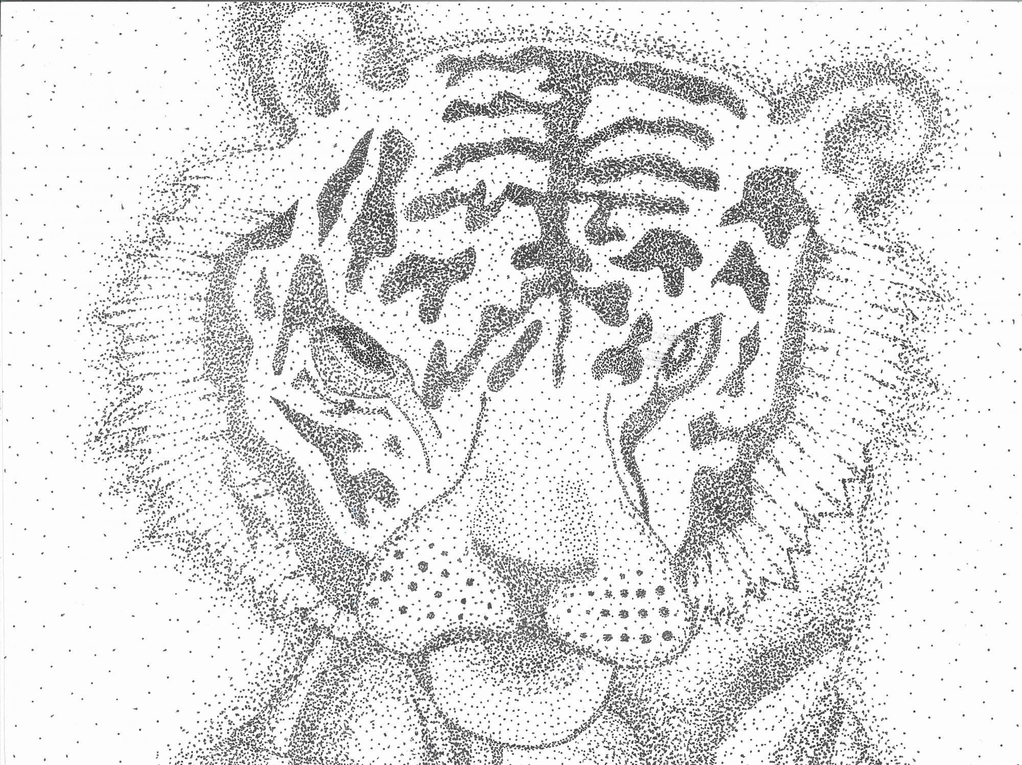 """Tiger"" Ireland Branner, age 14. Madison, Alabama. United States. Madison Academy. Teacher: Peggy Hickerson. River of Words 2018 Finalist."