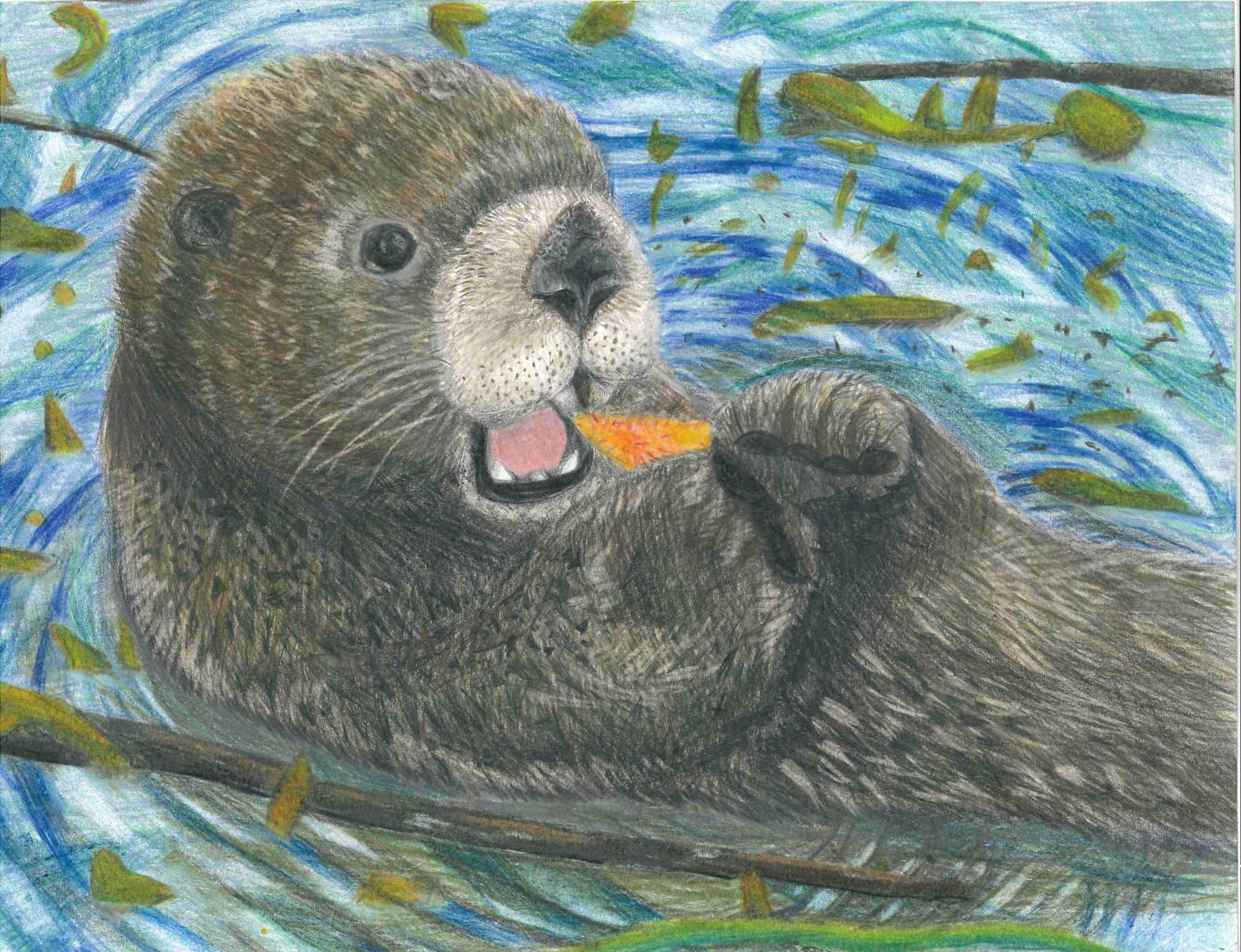 """The Sea Otter"" Jill Wang, age 12. Union City, California, United States. River of Words 2018 Finalist."