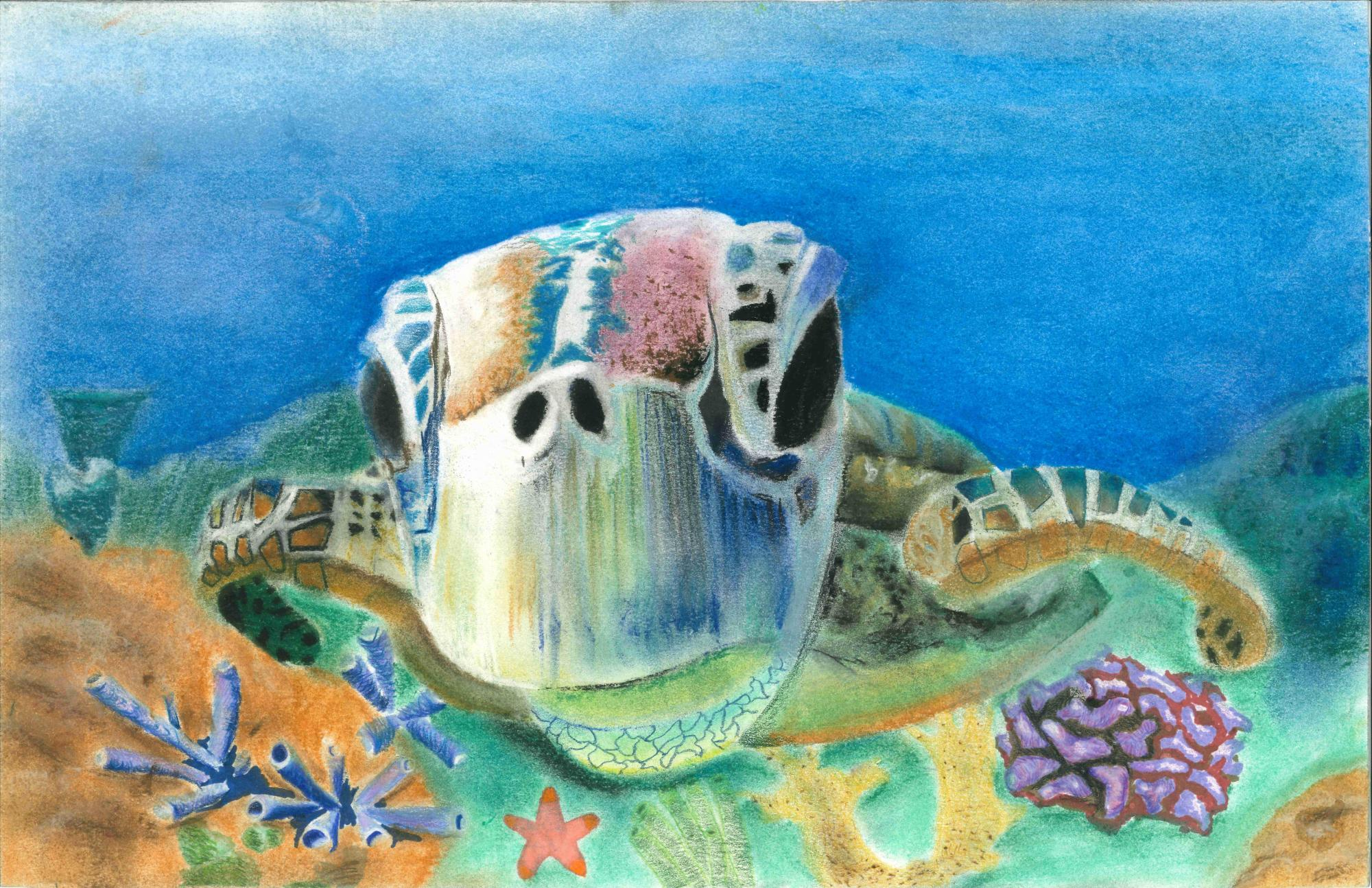 """""""Life in Water"""" Kandace Wang, age 11 Duluth, GA. United States SKA Academy of Art and Design Teacher: San Teh"""