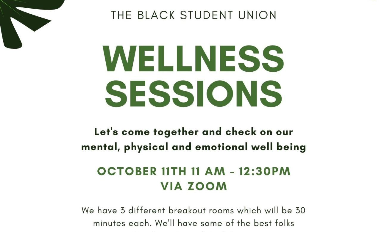 BSU Wellness Sessions