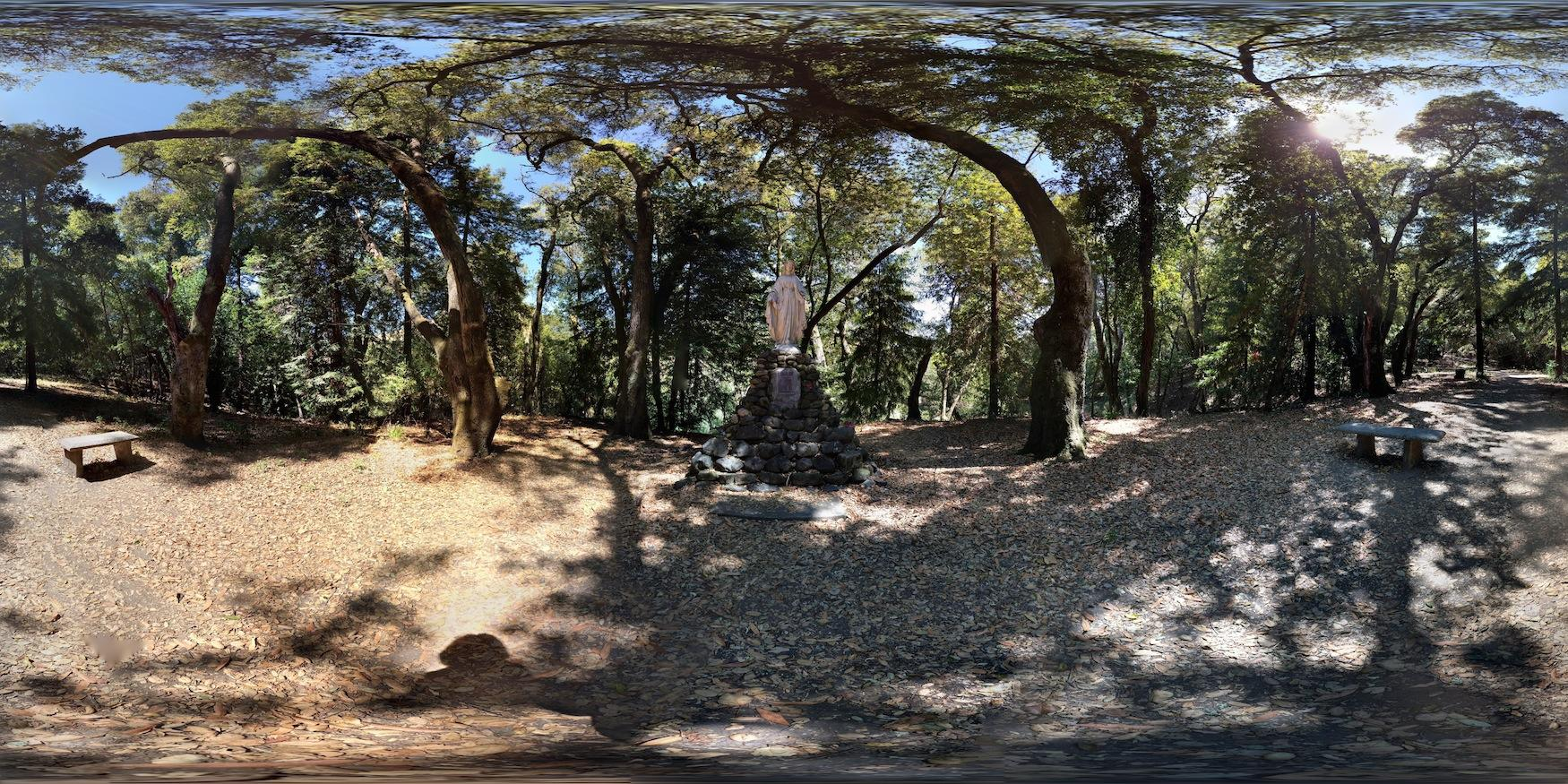 360-degree view of statue at Redwood Grove.