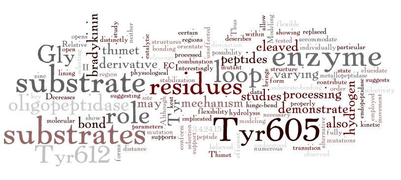 Jeffrey Sigman, Professor Chemistry  School of Science  Bruce, L. A., Sigman, J. A., Randall, D., Rodriguez, S., Song, M. M., Yi Dai, Elmore, D. E., et al. (2008). Hydrogen bond residue positioning in the 599–611 loop of thimet oligopeptidase is required for substrate selection. FEBS Journal, 275(22), 5607–5617. doi:10.1111/j.1742-4658.2008.06685.x