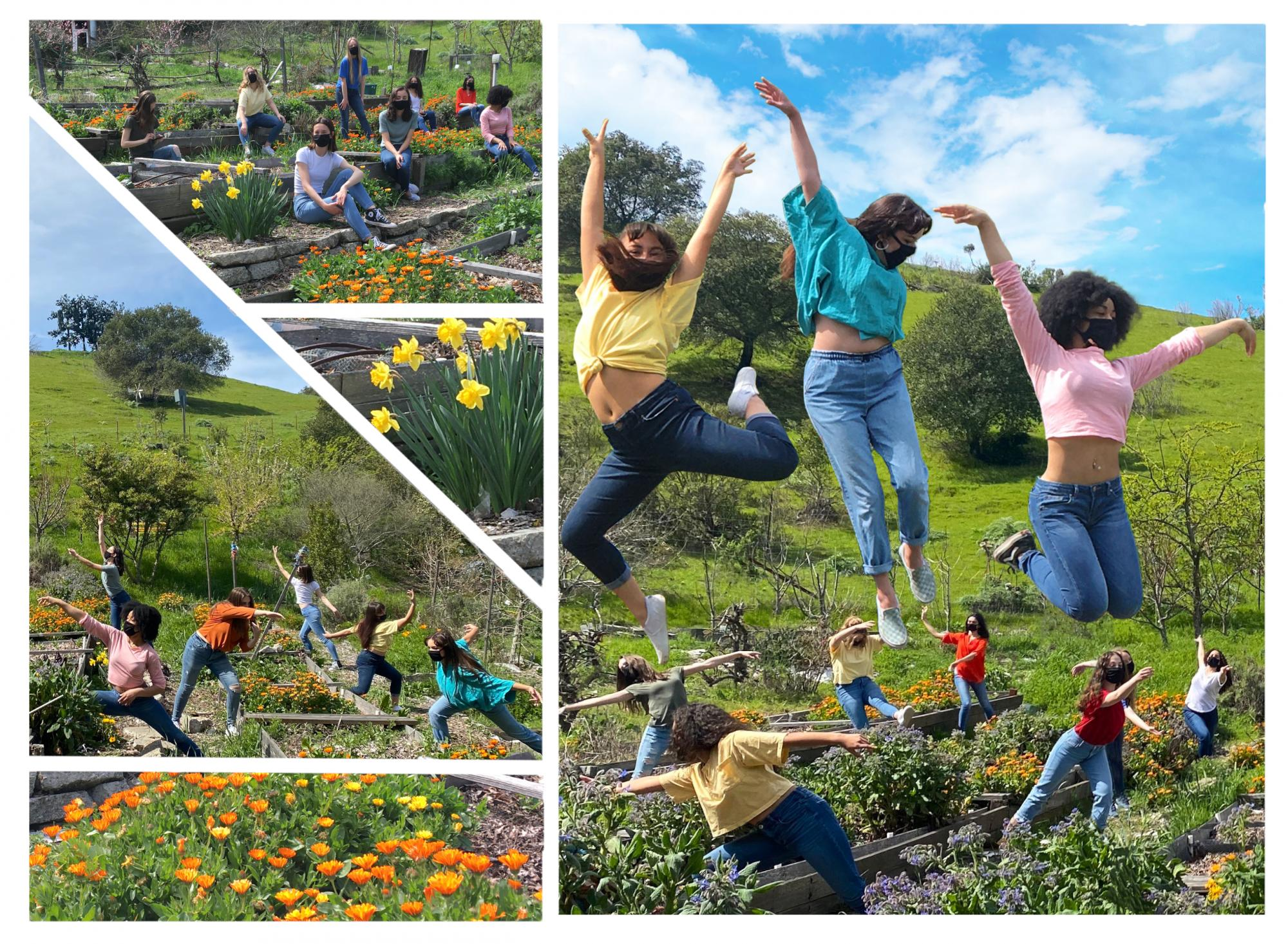 SMC Dance Company dances in the garden with flowers