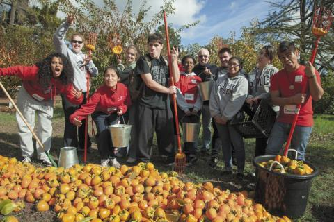 Harvest Compassion: Students turn backyard bounty into a blessing for food banks