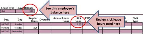 GaelXpress supervisor approval screen depicting the location of an employee's leave balance and usage for the period.