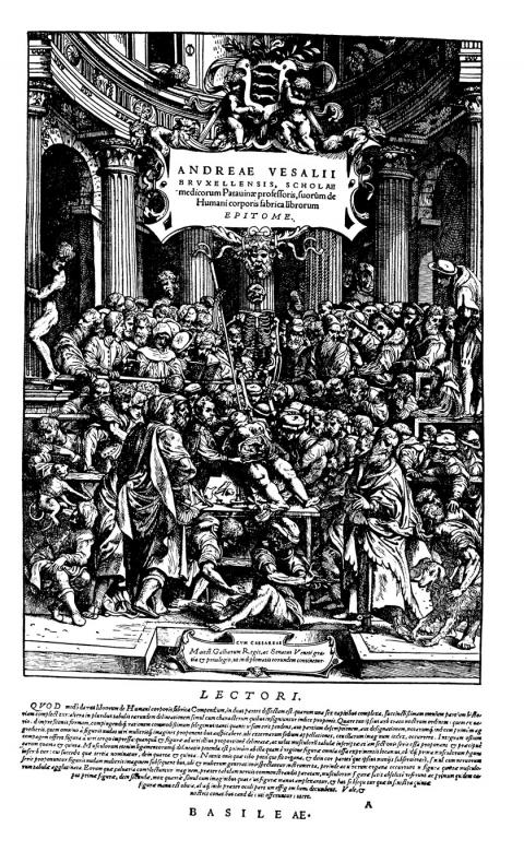 Andreas Vesalius De Humani Corporis Fabrica. Fabrica is a seminal work in the development of modern medicine and anatomy.