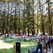 Music in Redwood Grove